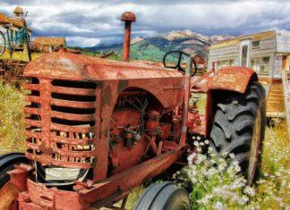 30 pomysłów na biznes na wsi